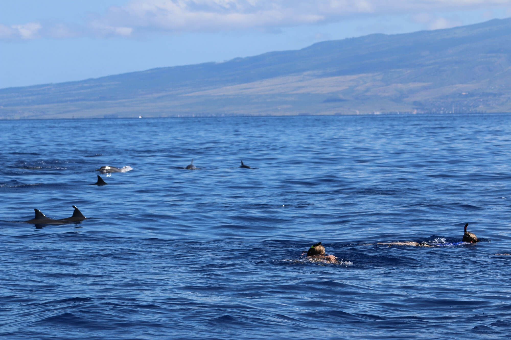 Boat Charter Tours on Maui