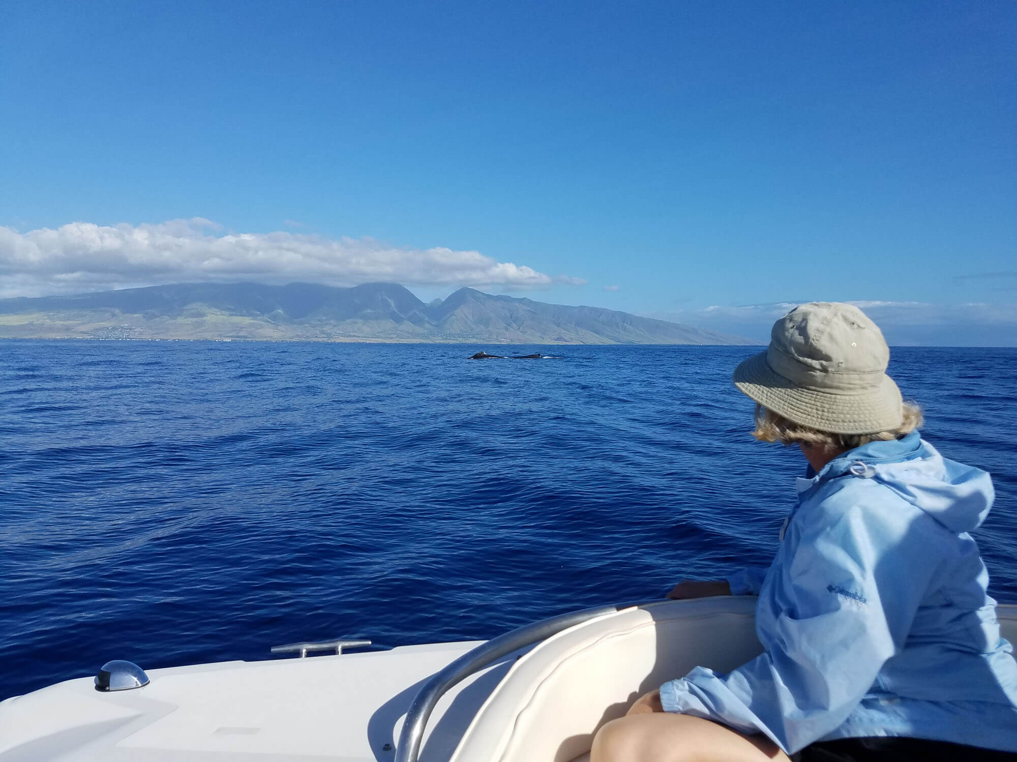 Boat Tours on the Island of Maui