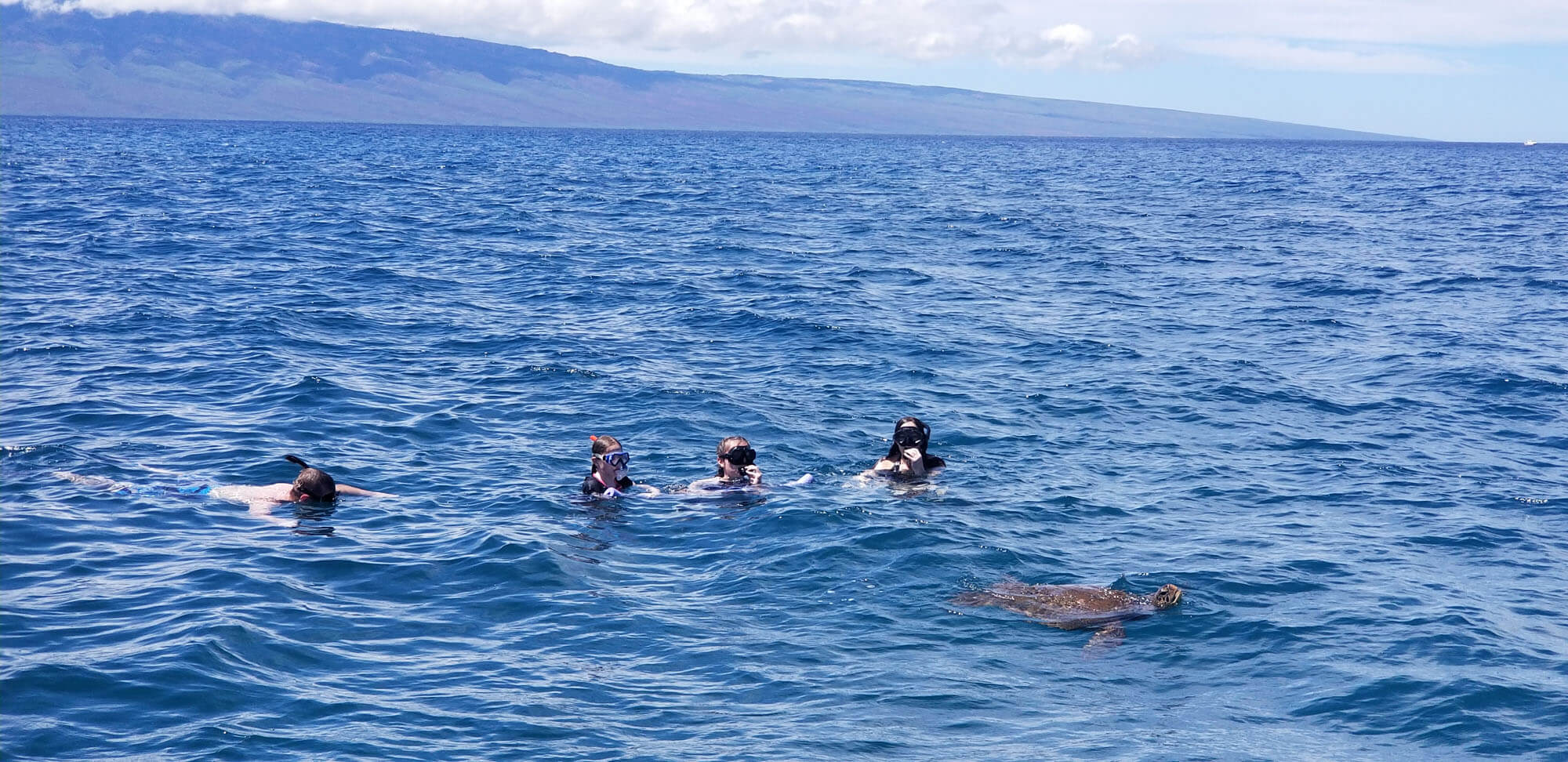 Snorkeling Tours in Maui